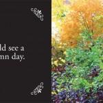...a beautiful autumn day.