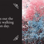 ...while walking on that autumn day.